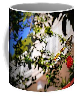Dubrovniks Butterfly Coffee Mug