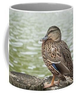 Duck By The Pond Coffee Mug