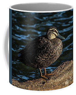 Duck On A Log Coffee Mug