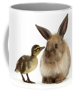 Duck Out Bunny Coffee Mug