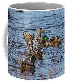 Duck Standing Coffee Mug by Ray Congrove