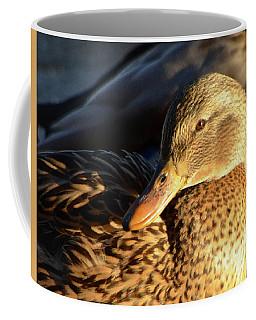 Duck Sunbathing Coffee Mug