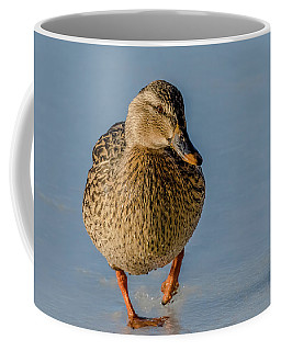 Duck Walk On Ice Coffee Mug