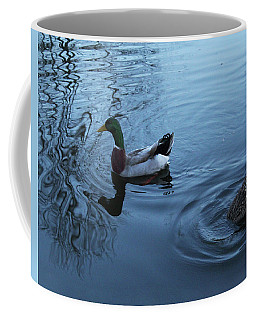 Coffee Mug featuring the photograph Mallard Duck by Melinda Blackman