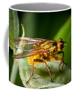 Dung Fly On Leaf Coffee Mug