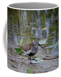 Dunlin 2 Coffee Mug
