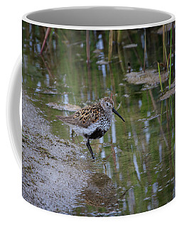Coffee Mug featuring the photograph Dunlin by Gary Hall