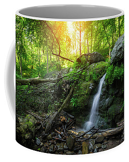 Dunnfield Creek Sunrise  Coffee Mug