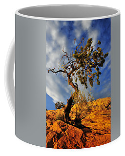 Coffee Mug featuring the photograph Dusk Dance by Skip Hunt