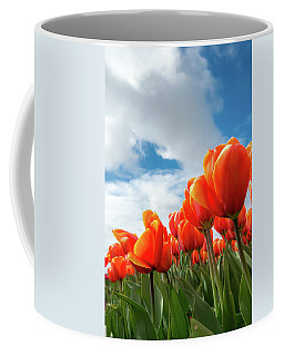 Dutch Tulips Near Keukenhof Coffee Mug