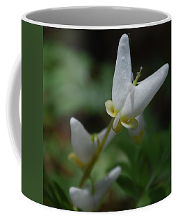 Dutchman's Breeches 2 Coffee Mug