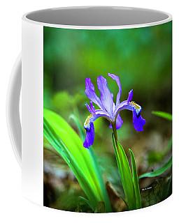 Dwarf Crested Iris Coffee Mug