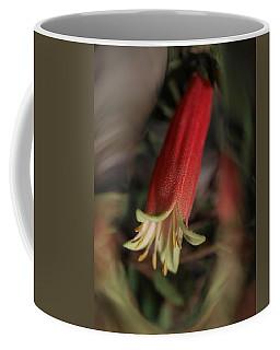 Dynamic Correa Coffee Mug