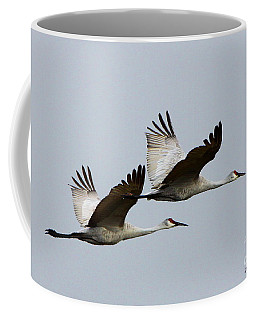Dynamic Duo Coffee Mug