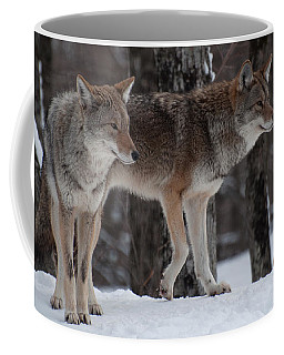 Coffee Mug featuring the photograph Dynamic Duo by Bianca Nadeau