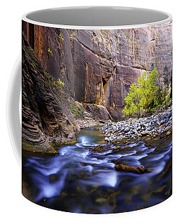 Dynamic Zion Coffee Mug
