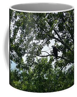 Eagle At Codorus Coffee Mug by Donald C Morgan