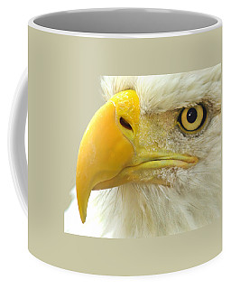 Coffee Mug featuring the photograph Eagle Eye by Shane Bechler