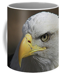 Coffee Mug featuring the photograph Eagle Eye by Steve Stuller