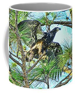 Coffee Mug featuring the photograph Eagle Fledgling 2017 by Deborah Benoit