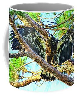 Coffee Mug featuring the photograph Eagle Fledgling II 2017 by Deborah Benoit