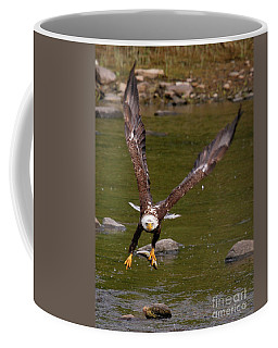 Coffee Mug featuring the photograph Eagle Fying With Fish by Debbie Stahre