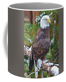 Eagle Glory Coffee Mug