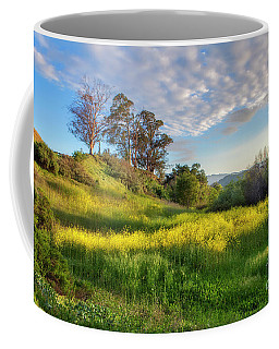 Eagle Grove At Lake Casitas In Ventura County, California Coffee Mug