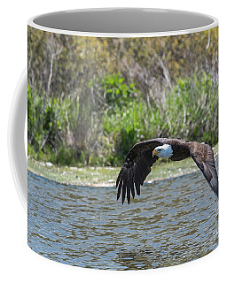 Eagle In Flight 3090 Coffee Mug