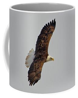 Eagle In Flight Coffee Mug