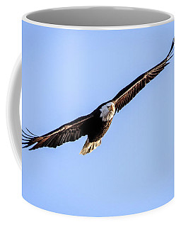 Coffee Mug featuring the photograph Eagle In Flight by Ray Congrove