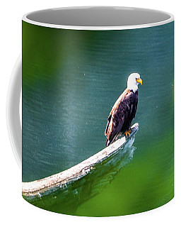 Eagle In Lake Coffee Mug