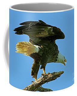 Eagle Mom, The Scolding Coffee Mug
