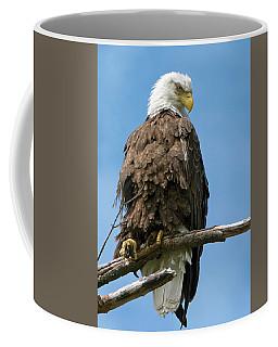 Eagle On Perch Coffee Mug