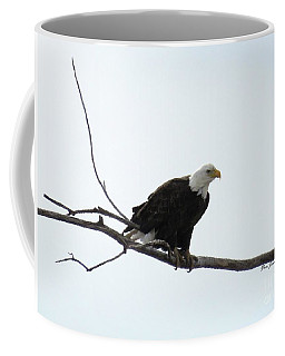 Eagle On The Tree Branch Coffee Mug