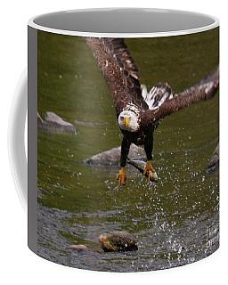 Eagle Over Seal Rock Coffee Mug