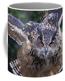 Eagle Owl Close Up Coffee Mug