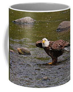 Coffee Mug featuring the photograph Eagle Prepares For Take-off by Debbie Stahre