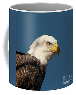 Coffee Mug featuring the photograph Eagle by Rod Wiens