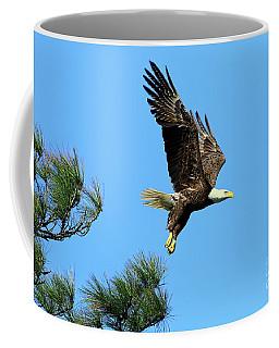 Coffee Mug featuring the photograph Eagle Series 1 2017 by Deborah Benoit