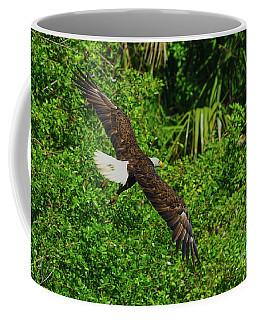 Coffee Mug featuring the photograph Eagle Series Flight by Deborah Benoit