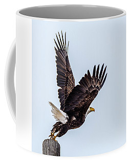 Eagle Taking Flight Coffee Mug