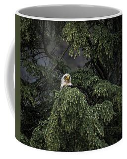 Eagle Tree Coffee Mug by Timothy Latta
