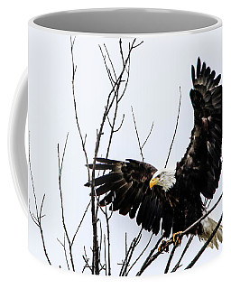 Eagle Tree Top Landing Coffee Mug