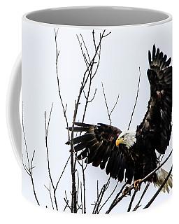 Eagle Tree Top Landing Coffee Mug by Ray Congrove