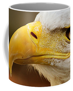 Eagles Eyes Coffee Mug