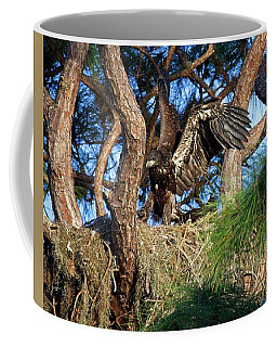 Eaglet Finding Wings Coffee Mug by Ronald Lutz