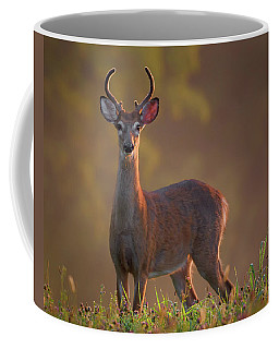 Early Buck Coffee Mug