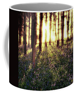Early Morning Amongst The Coffee Mug