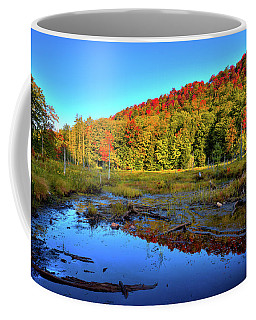 Coffee Mug featuring the photograph Early Morning Light by David Patterson